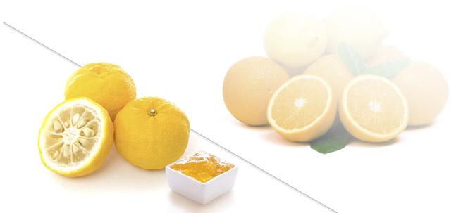 VII Concurso Taisi, Pasión por la Fruta